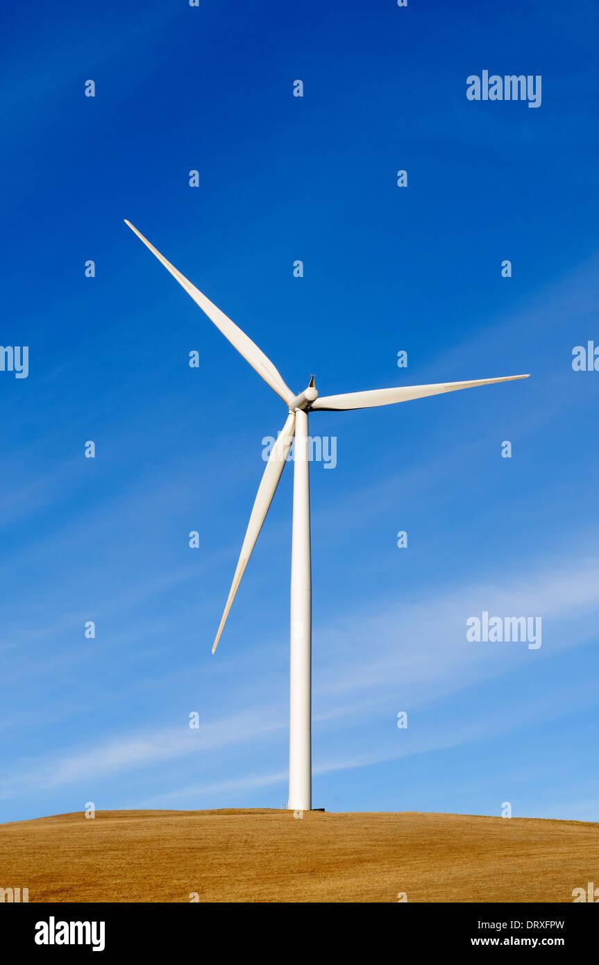 Nachhaltigen Stromgenerator angetrieben durch natürliche Energiequelle wind Stockfoto