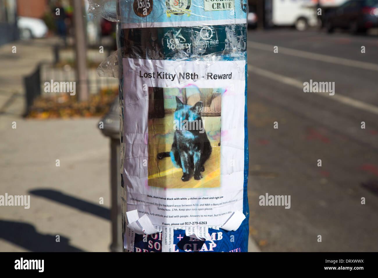 Verlorene Katze Poster, Brooklyn, NYC Stockbild