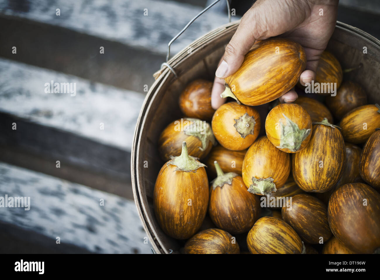 Turkish Stockfotos & Turkish Bilder - Alamy
