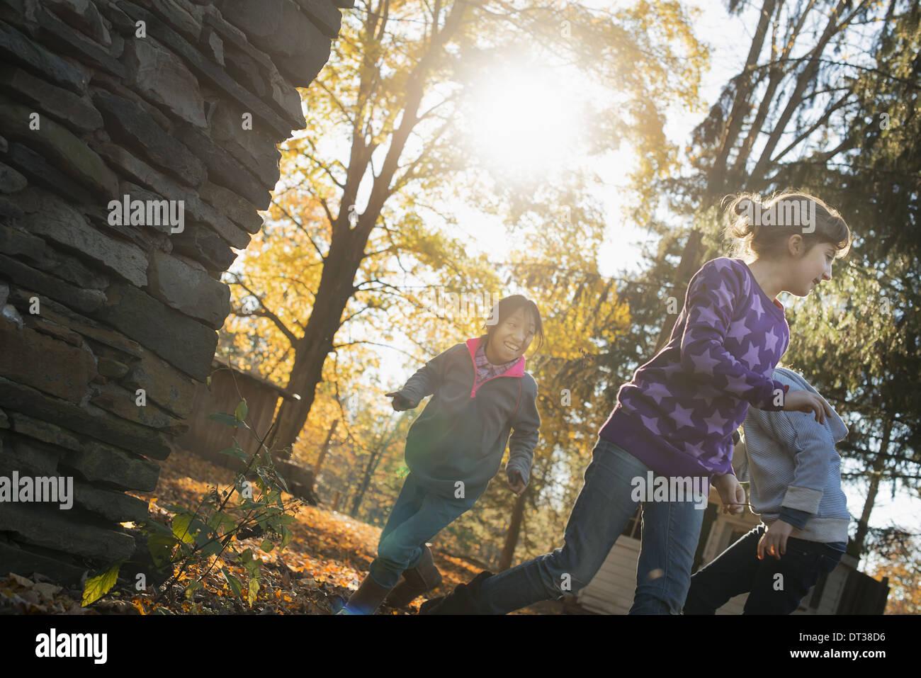 Drei Kinder in der Herbstsonne. Spielen im Freien die abgefallenen Blätter in die Luft werfen. Stockbild