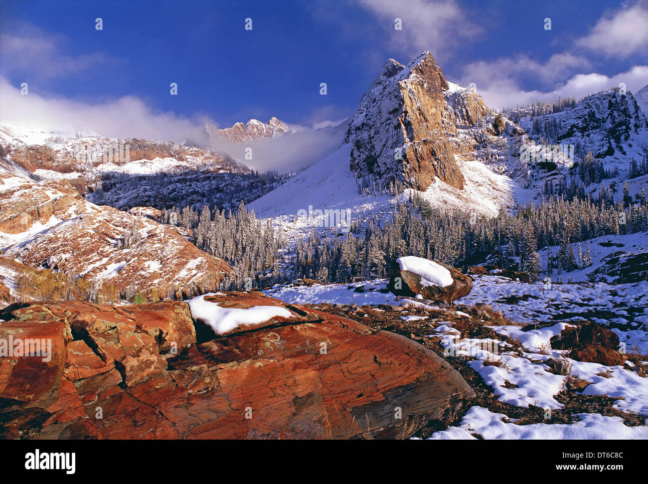 Winter in Cottonwood Canyon Bergen Wasatchkette. Kiefernwälder im Schnee mit niedrigen Wolken. Die Twin Peaks Wilderness Area. Stockbild