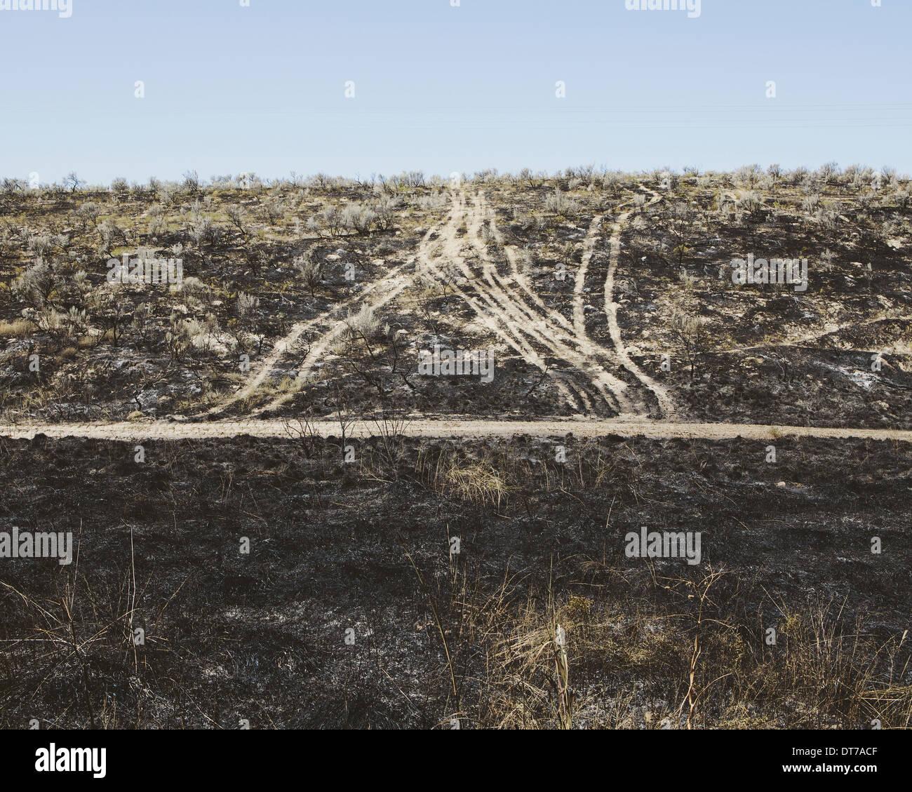 Straßen, die sich durch vor kurzem gebrannten Landschaft Kittitas County Washington USA USA Stockbild