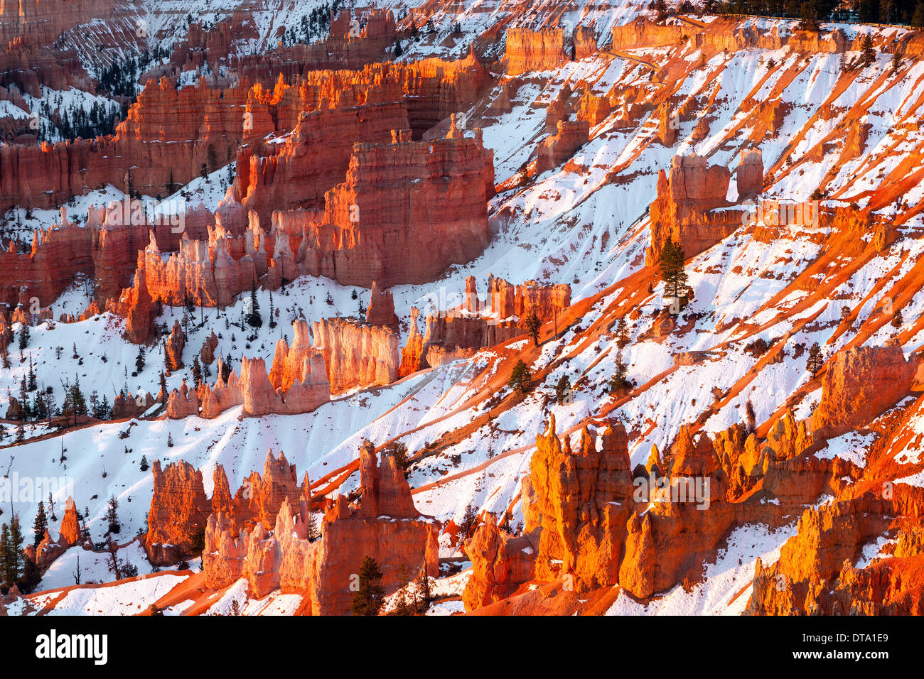Winter-Sonnenaufgang in Bryce-Canyon-Nationalpark, Utah - USA Stockbild