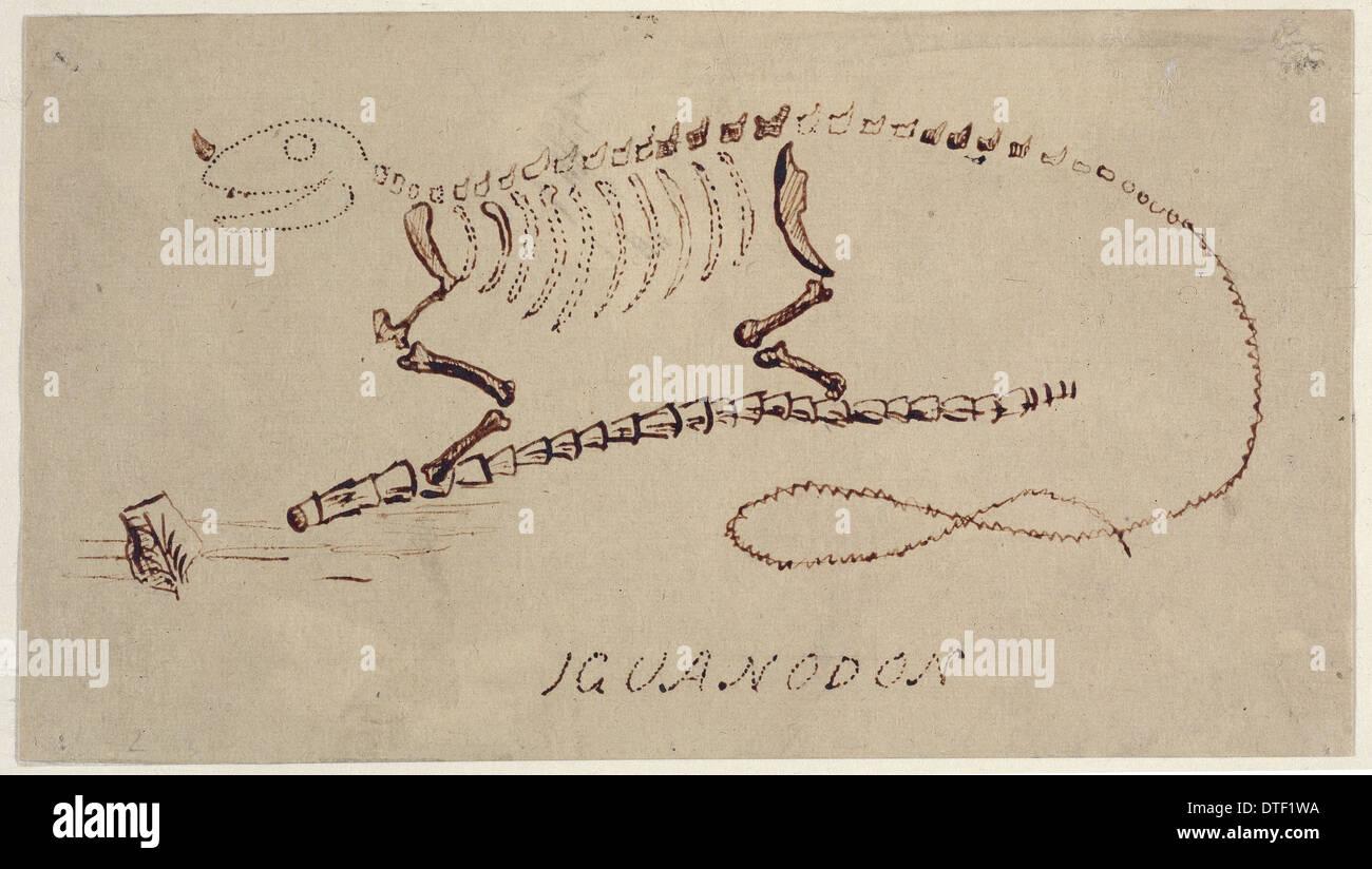 Iguanodon Rekonstruktion von Gideon Mantell Stockbild