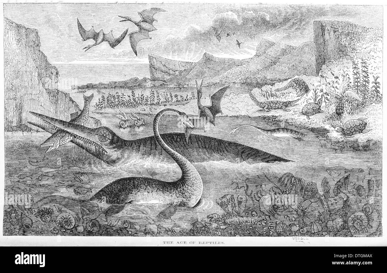 Das Zeitalter der Reptilien Stockbild