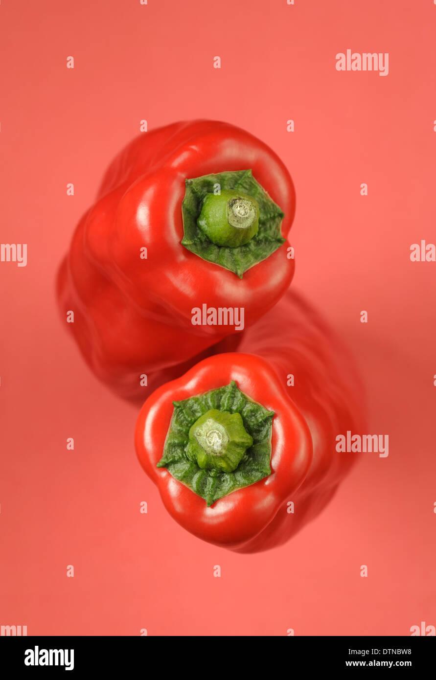 Zwei rote Paprika auf rotem Grund Stockbild