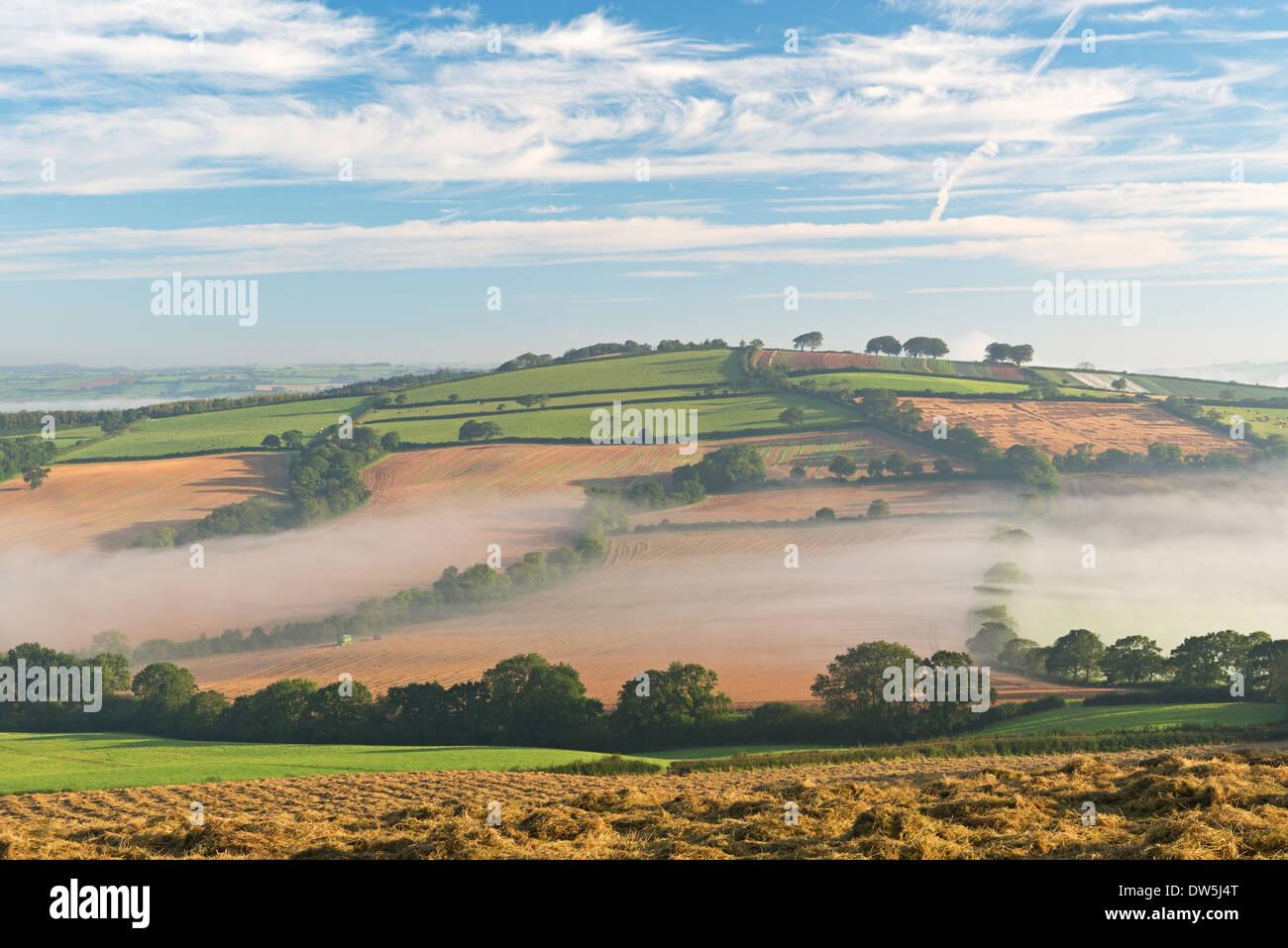 Nebel bedeckt Hügellandschaft an der Dämmerung, in der Nähe von Crediton, Devon, England. Herbst Stockbild