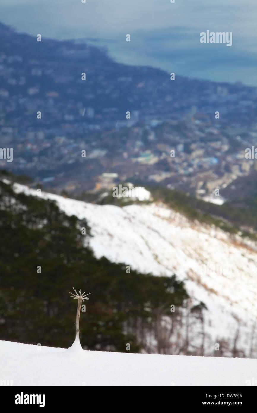 winterliche Berge Landschaft. im Freien Schuss Stockbild