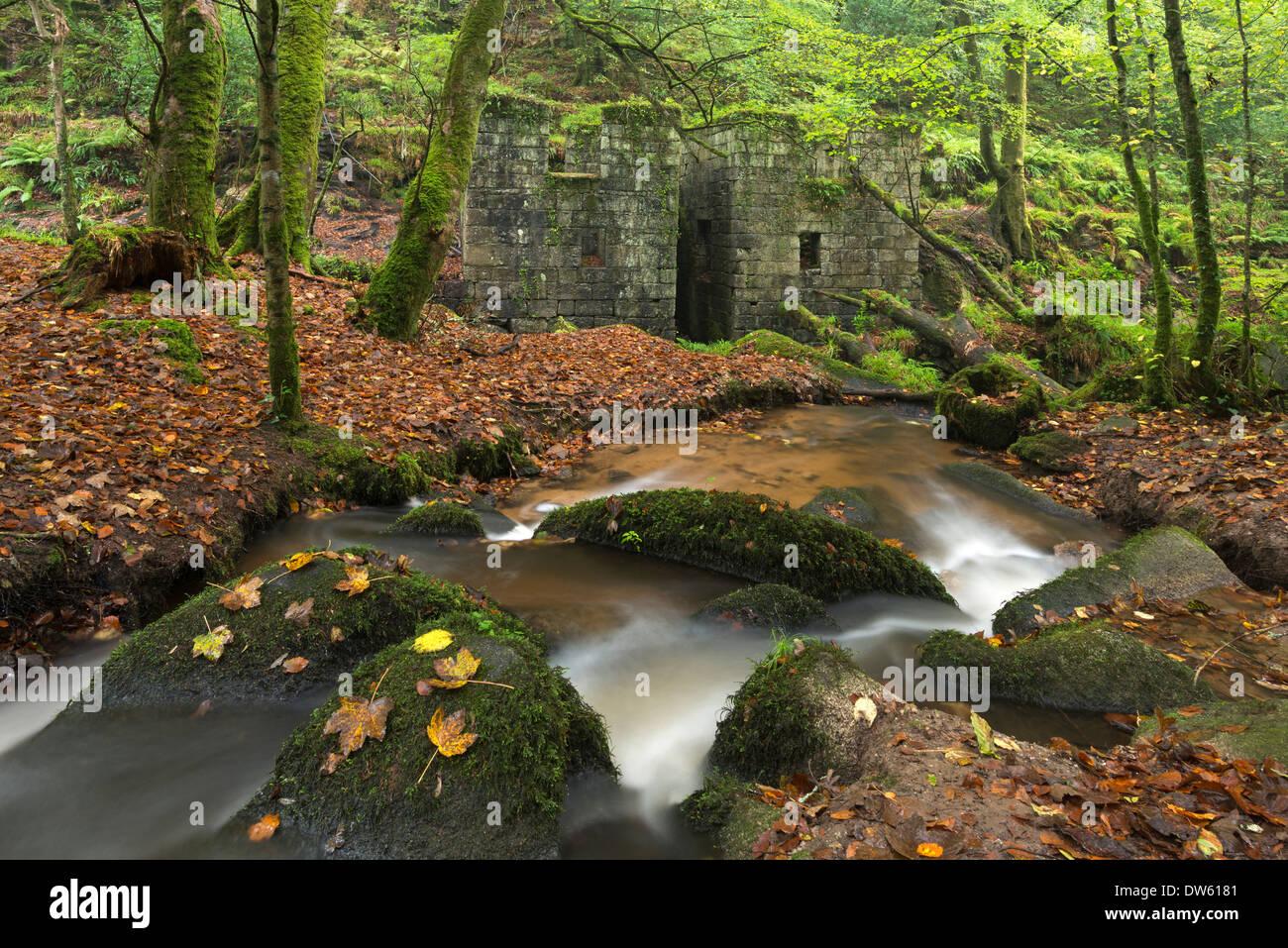 Reste der Schießpulver-Mühlen im Kennall Vale Naturreservat in Ponsanooth in der Nähe von Falmouth, Cornwall, England. Herbst (Oktober) 2013. Stockbild