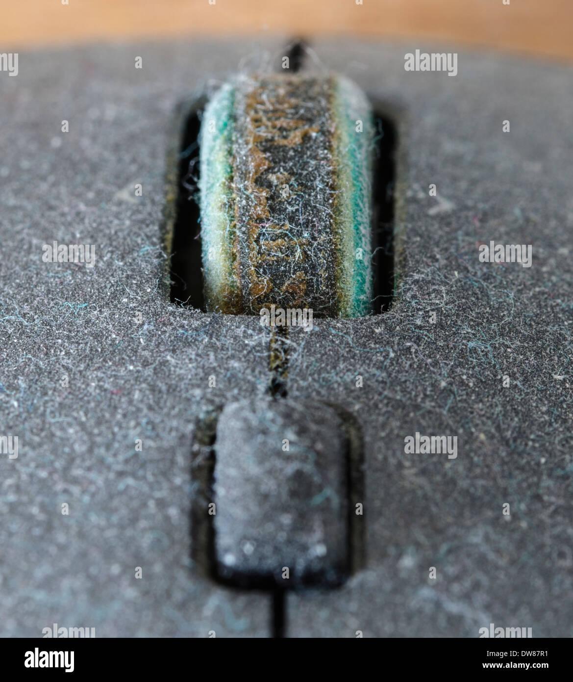 Staub. Oberseite einer Computermaus mit Staub bedeckt. Stockbild