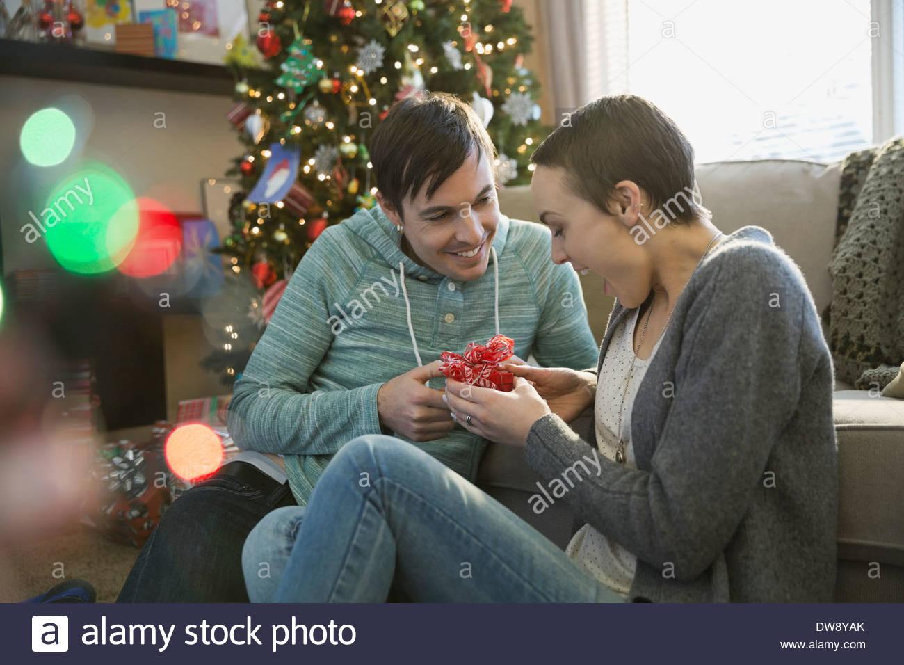 christmas gift stockfotos christmas gift bilder alamy. Black Bedroom Furniture Sets. Home Design Ideas