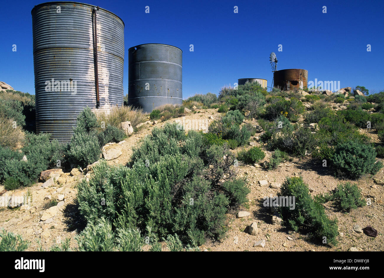 Elk248-2843 Kalifornien, Mojave National Preserve, Regierung Löcher, historische Wasserloch Stockbild