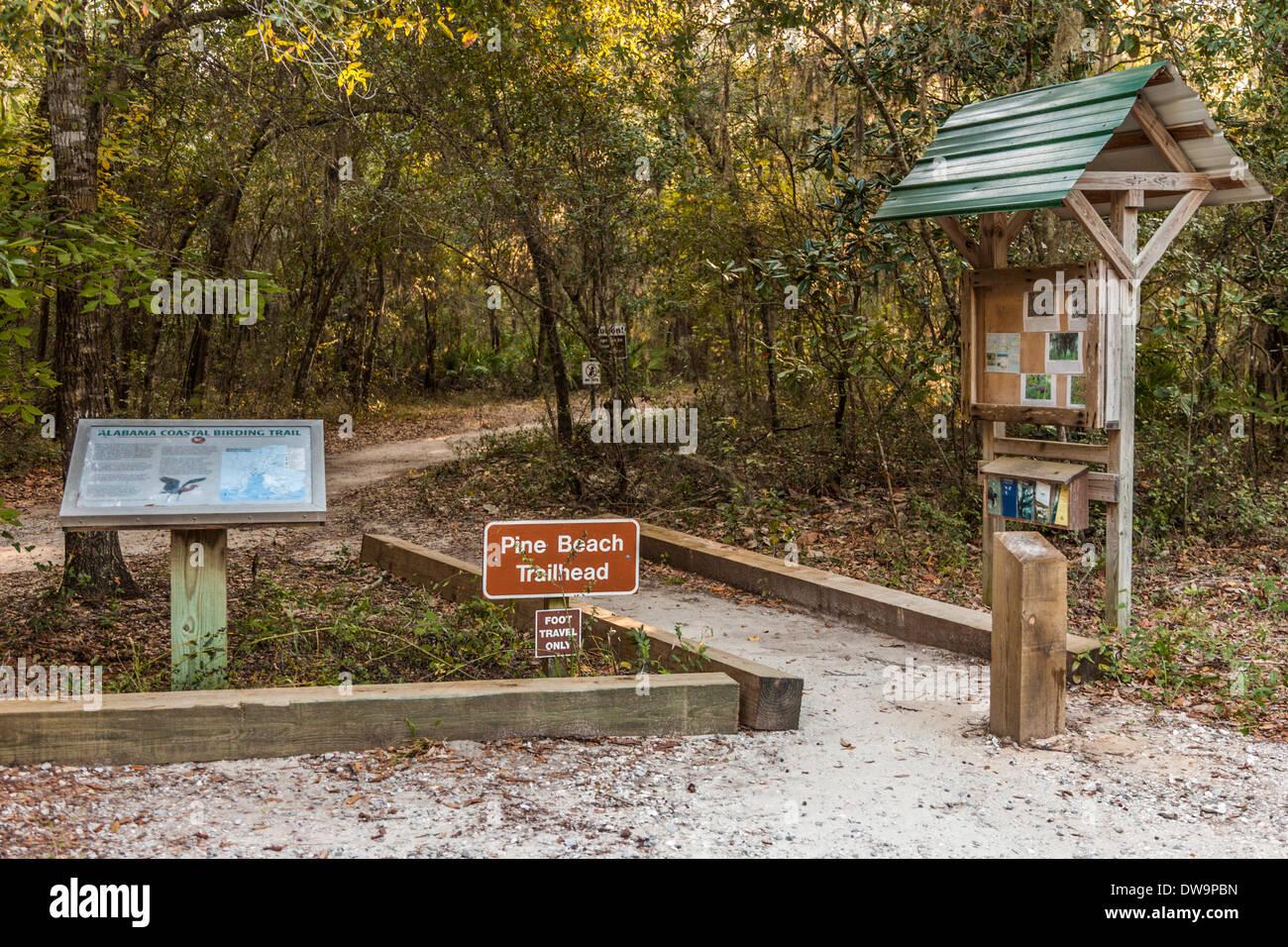 Kiefer Zweig Trailhead des Alabama Küsten Birding Trails im Bon Secour National Wildlife Refuge in Gulf Shores, Alabama Stockbild