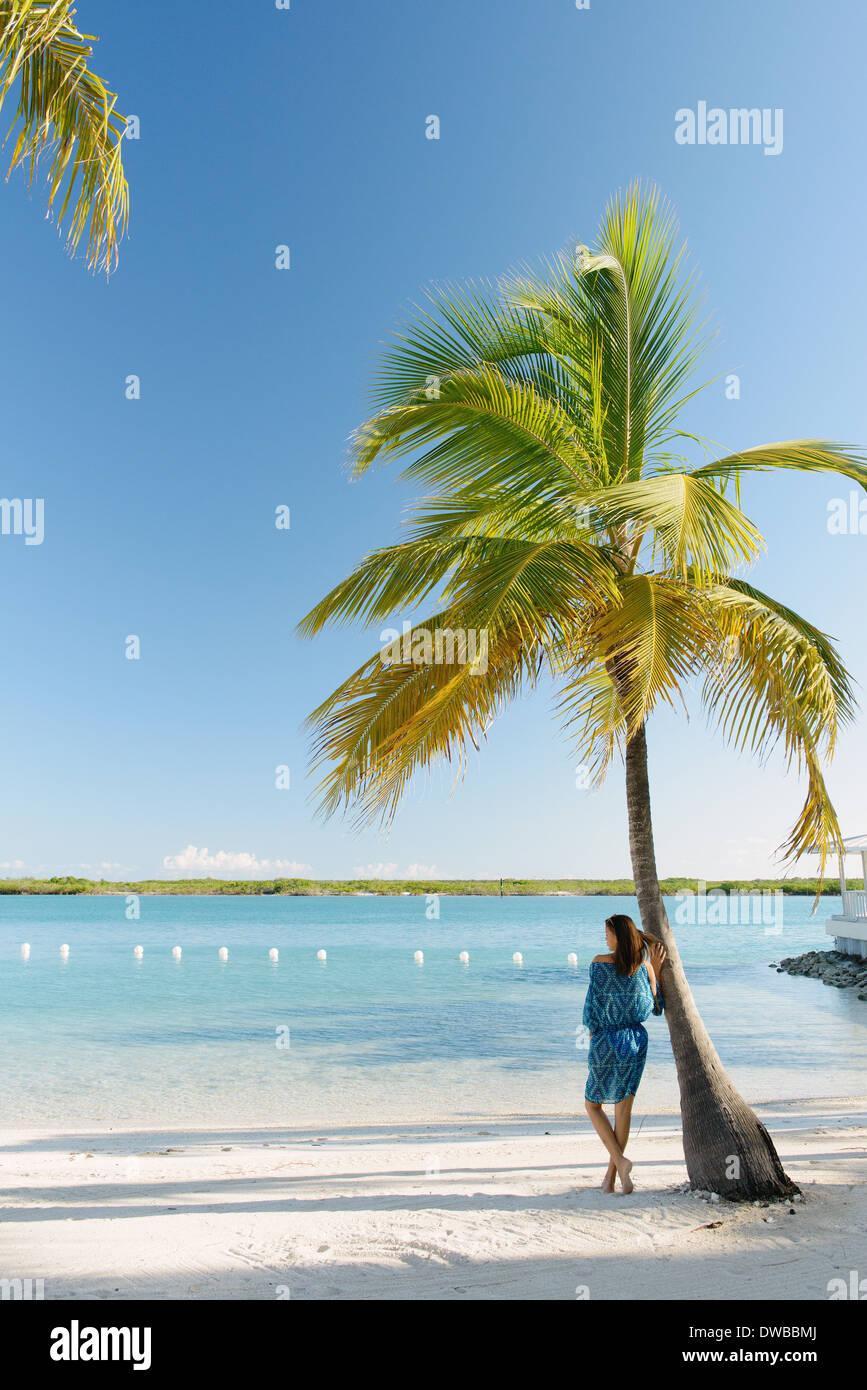 Junge Frau lehnt sich an Palme, Providenciales, Turks-und Caicosinseln, Caribbean Stockbild