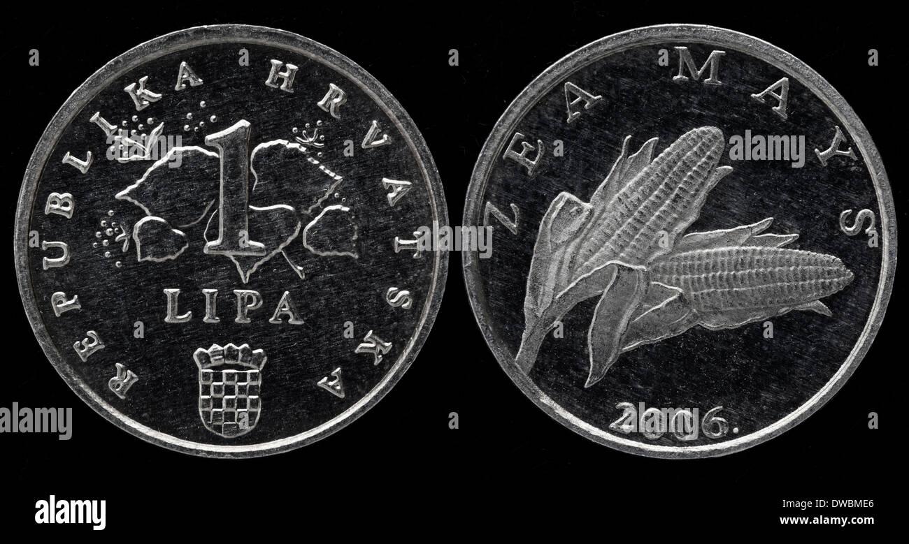 1 Lipa Münze Kroatien 2006 Stockfoto Bild 67255054 Alamy