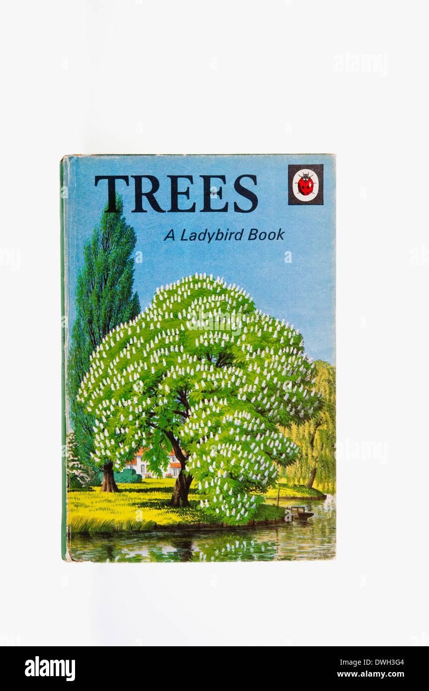 """""""Bäume"""" ein Marienkäfer buchen von Brian Vesey-Fitzgerald, mit Illustrationen von S R Badmin, veröffentlicht im Jahr 1963.  UK Stockbild"""