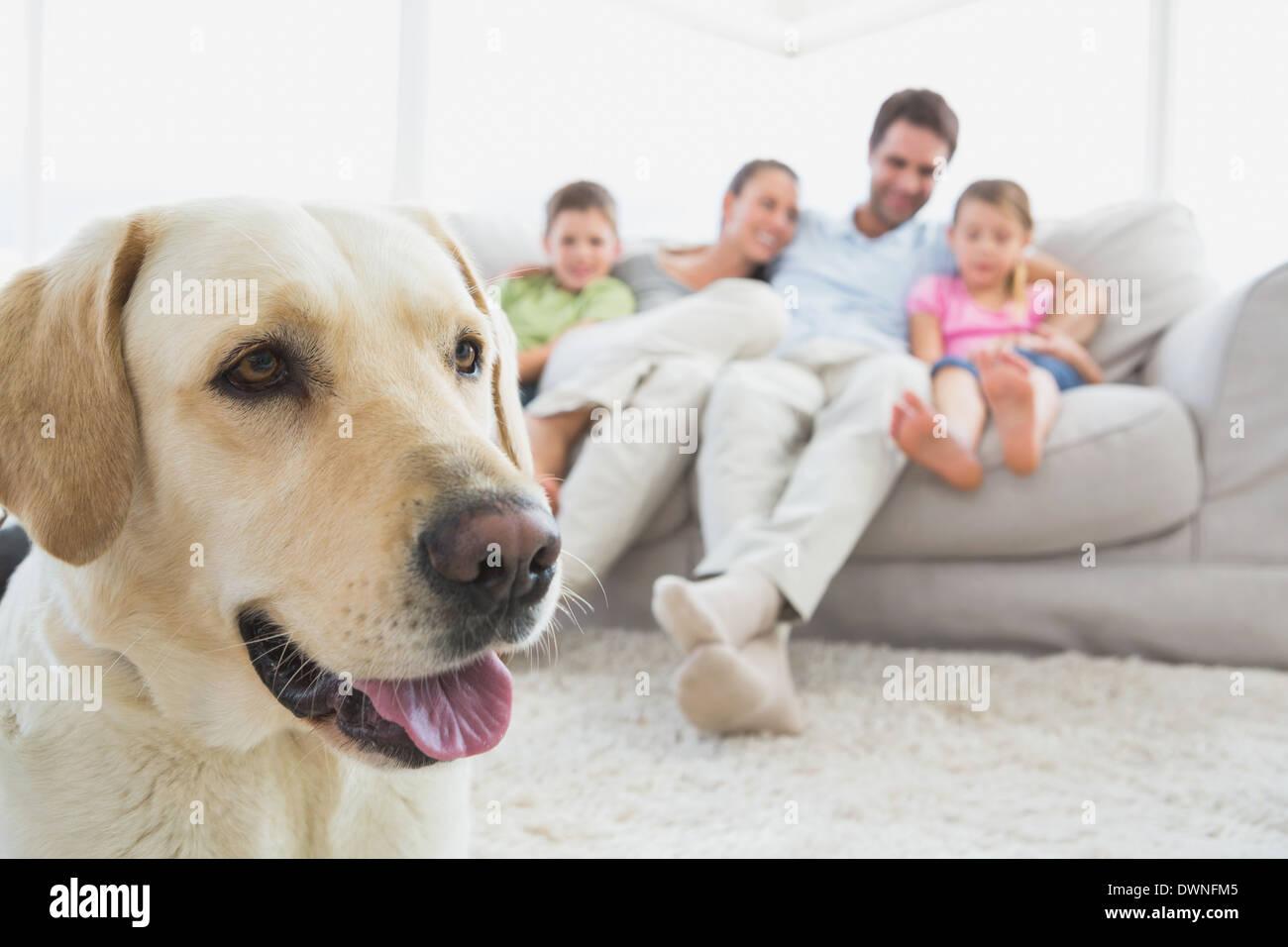 Glückliche Familie sitzen auf der Couch mit ihrem Haustier Labrador im Vordergrund Stockfoto