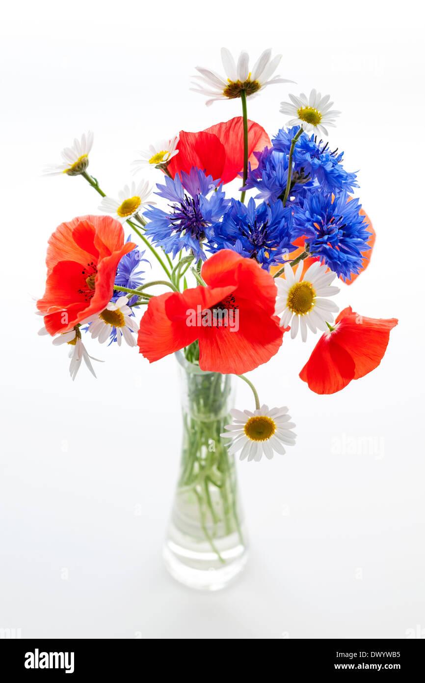 bouquet von wildblumen margeriten mohn kornblumen. Black Bedroom Furniture Sets. Home Design Ideas