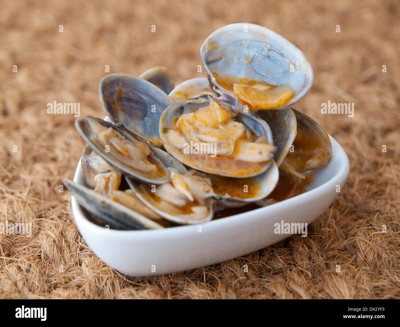 """Muscheln in einer Studioaufnahme im Rezept """"Almejas a la Marinera"""" gekocht. Stockbild"""