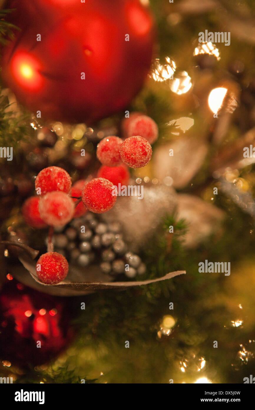 Berry und Ball Ornamente in beleuchtete Weihnachtsbaum hängen hautnah Stockbild