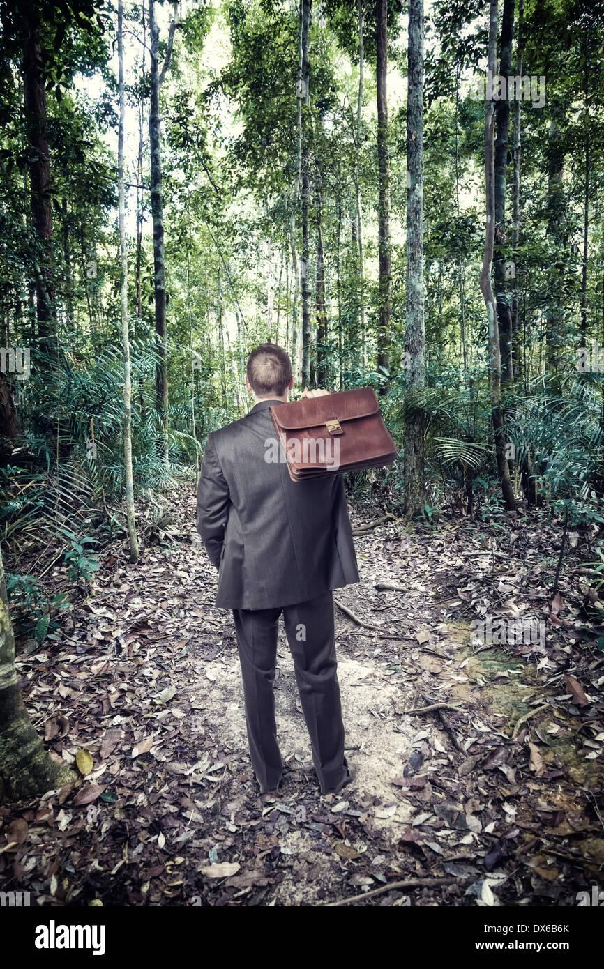 Geschäftsmann in tropischen Dschungel verloren Stockbild