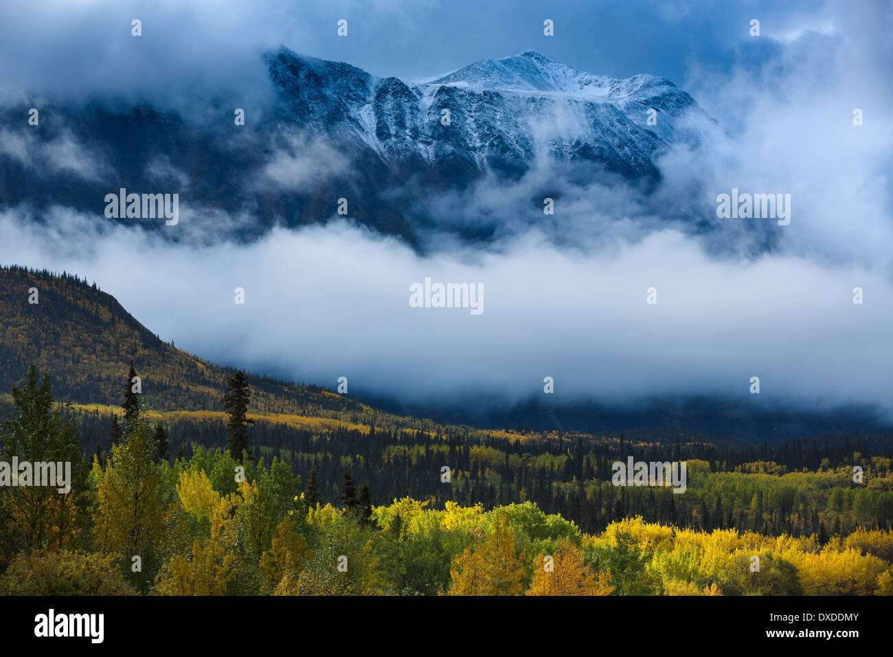 Herbstfärbung und Young Peak, British Columbia, Kanada Stockbild