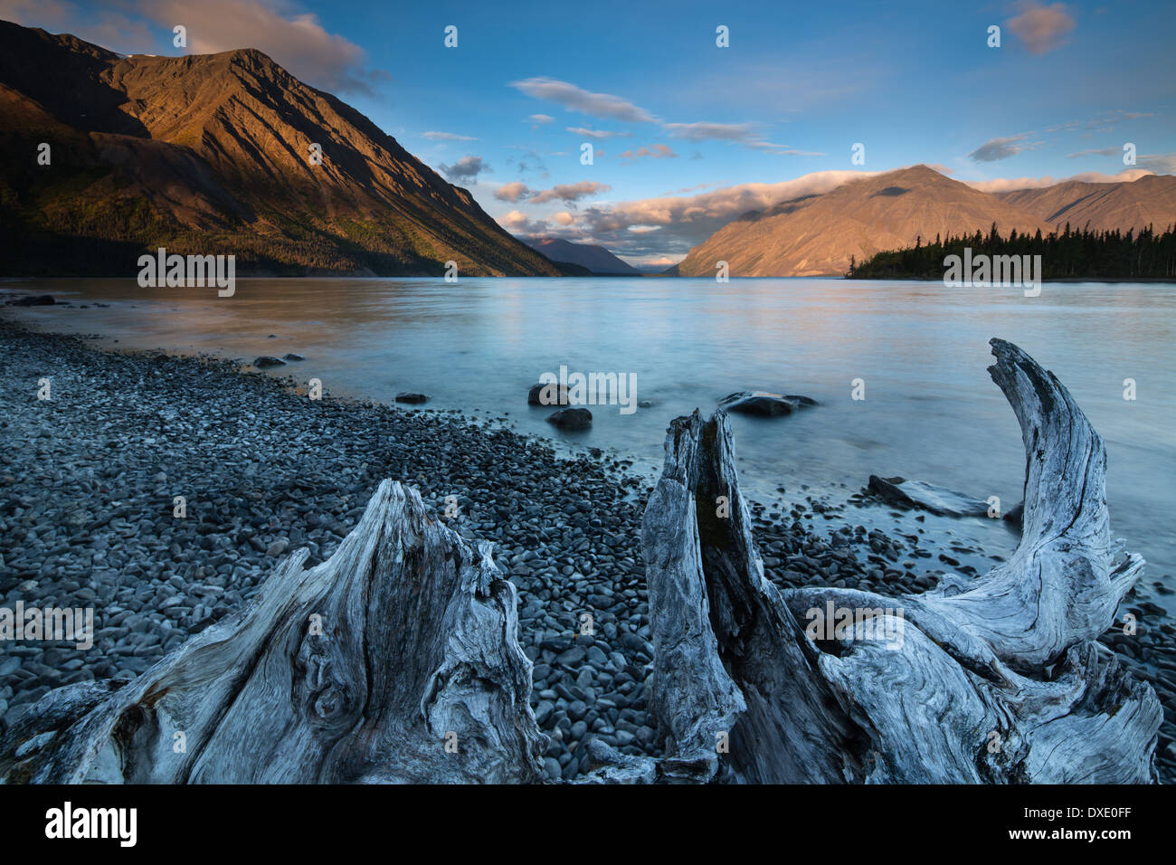Kathleen Lake at Dawn, Kluane National Park, Yukon Territorien, Kanada Stockbild