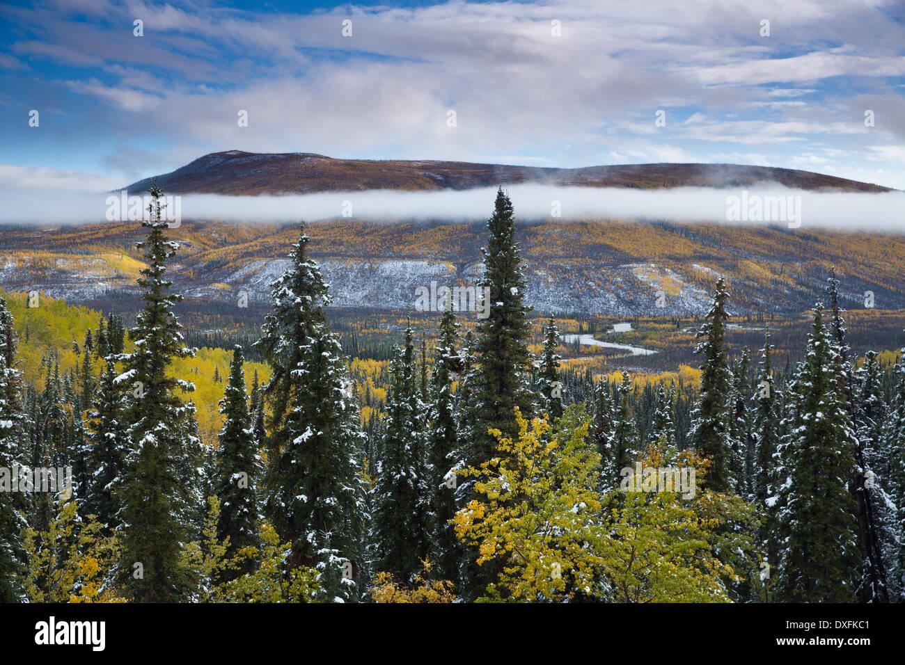 Herbstfärbung und der erste Schnee im Tal Stewart River, Yukon Territorien, Kanada Stockbild