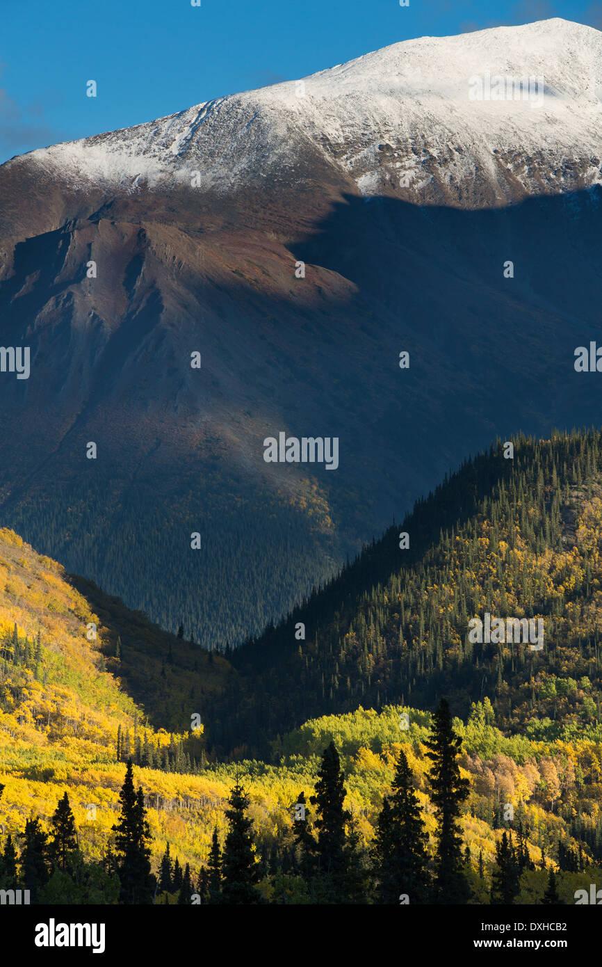 Herbst Farben entlang der South Klondike Highway und einen Schatten ähnelt dem Kopf eines Wolfes auf Young Peak British Columbia Kanada Stockbild