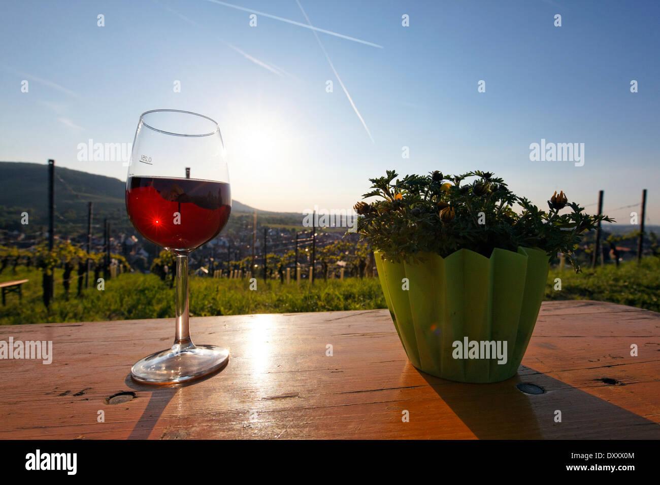 """Deutschland, Baden-Württemberg, Kernen-Stetten, """"Culinary Wine Trail"""", Weinfest, Wein, Sonnenuntergang Stockbild"""