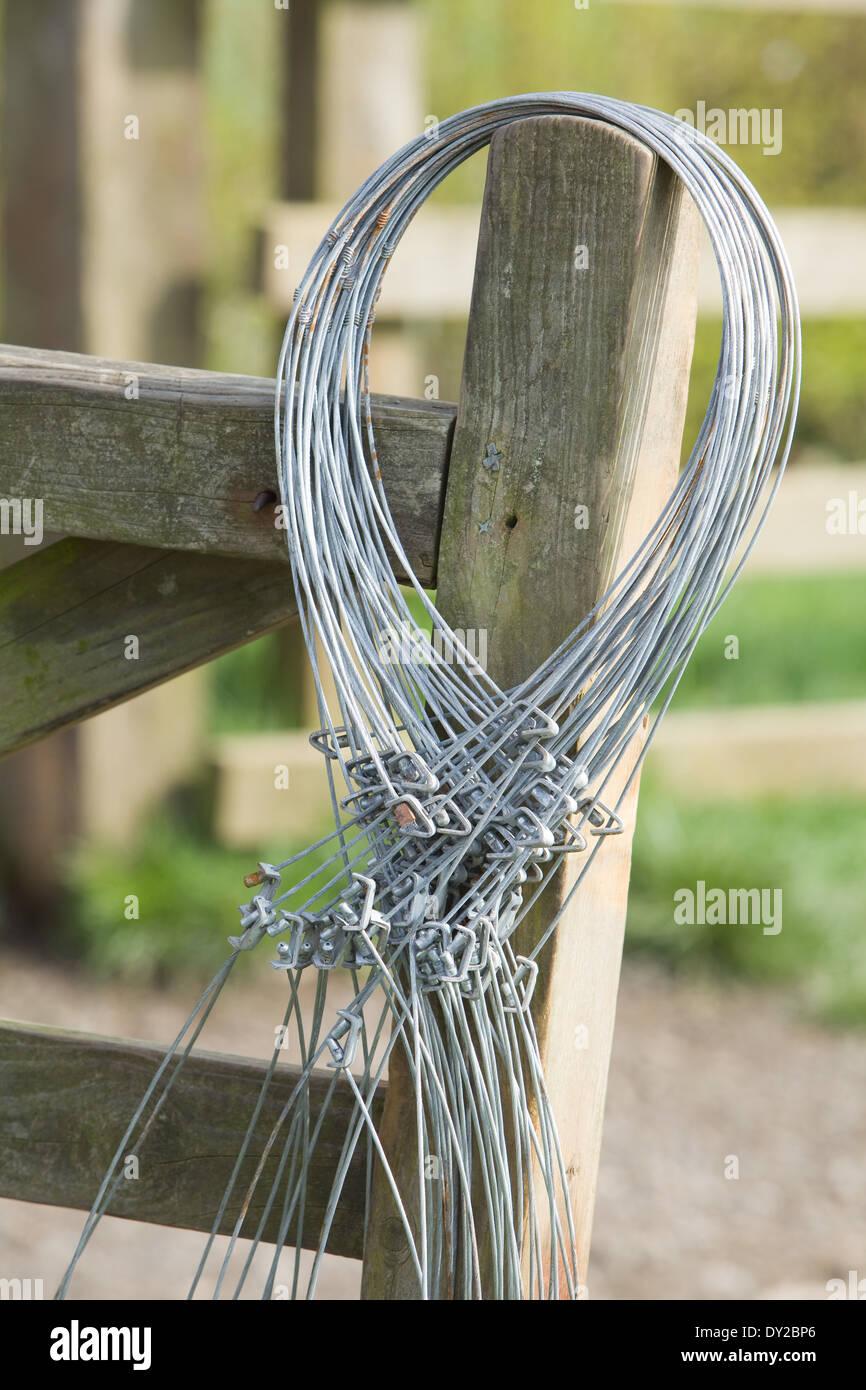 Draht-Schlingen hängen auf einem hölzernen Zaun-Pfosten. Schlingen ...