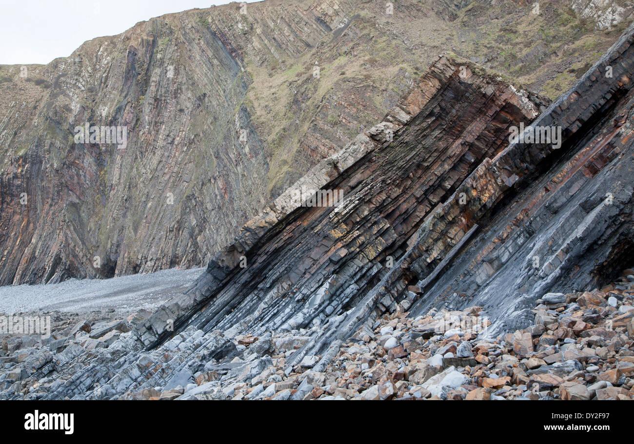 Komplexe Faltung des sedimentären Gesteinsschichten in Steilküsten am Hartland Quay, North Devon, England Stockbild