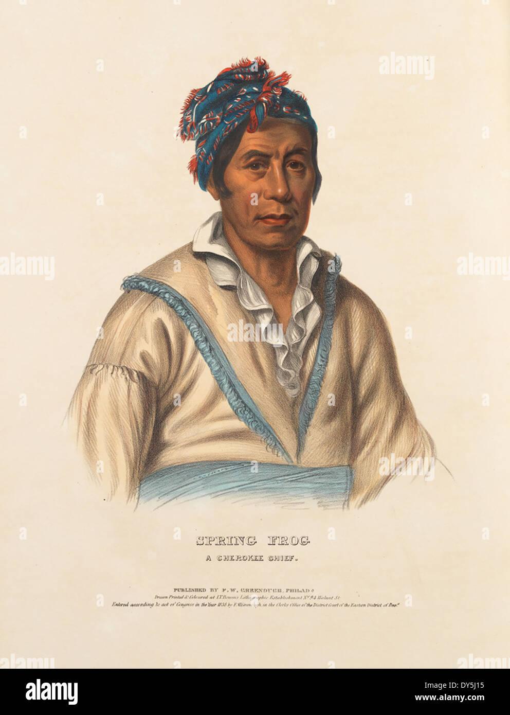 Feder Frosch, ein Cherokee Chief. Stockbild