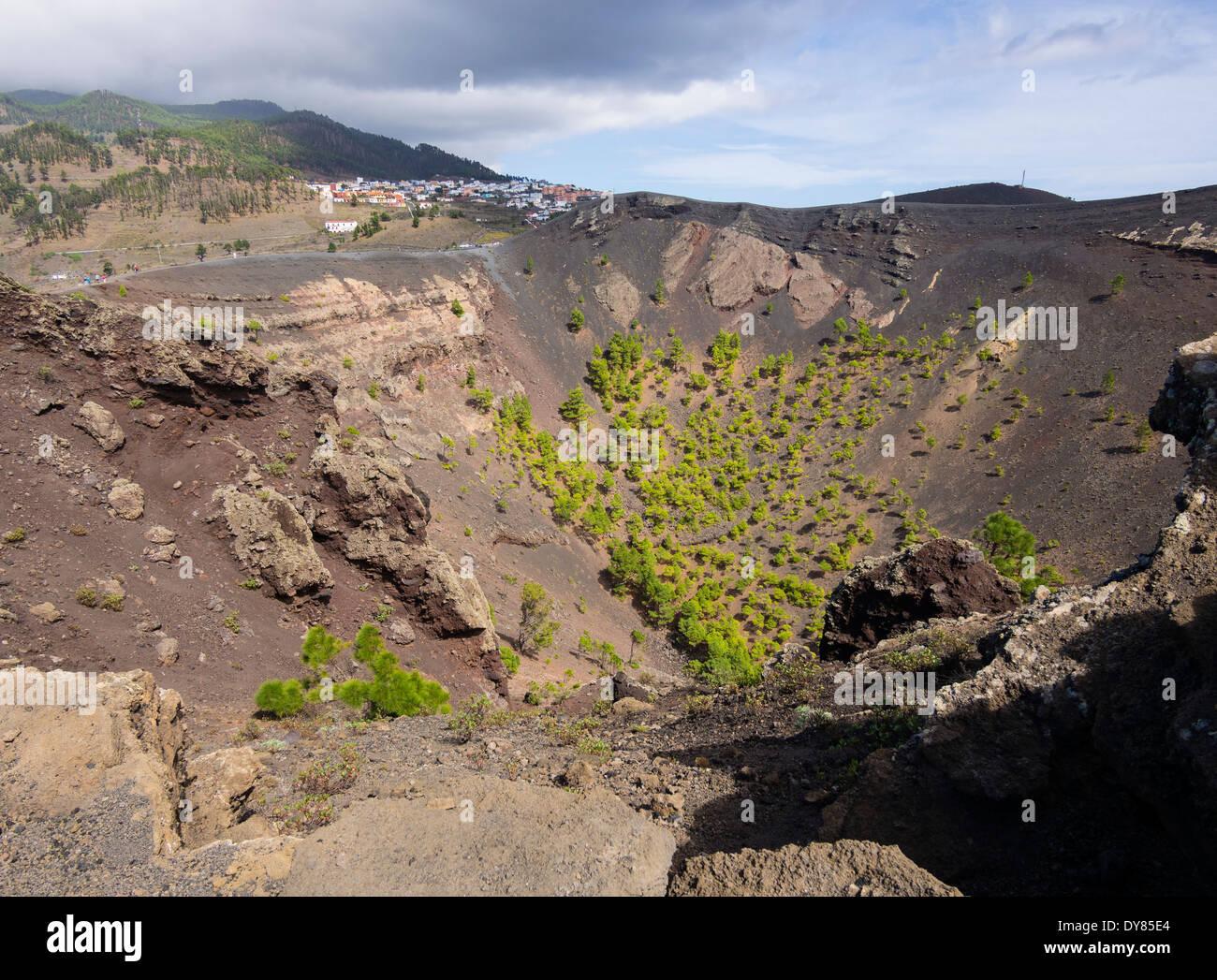 Kiefern wachsen in den Krater des Vulkans San Antonio in der Nähe der Stadt Los Canarios auf der Kanareninsel La Stockfoto