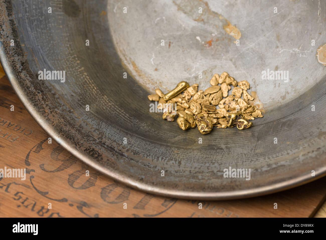 Nahaufnahme von einer goldenen Pfanne mit Gold-Nuggets, Alaska Stockbild