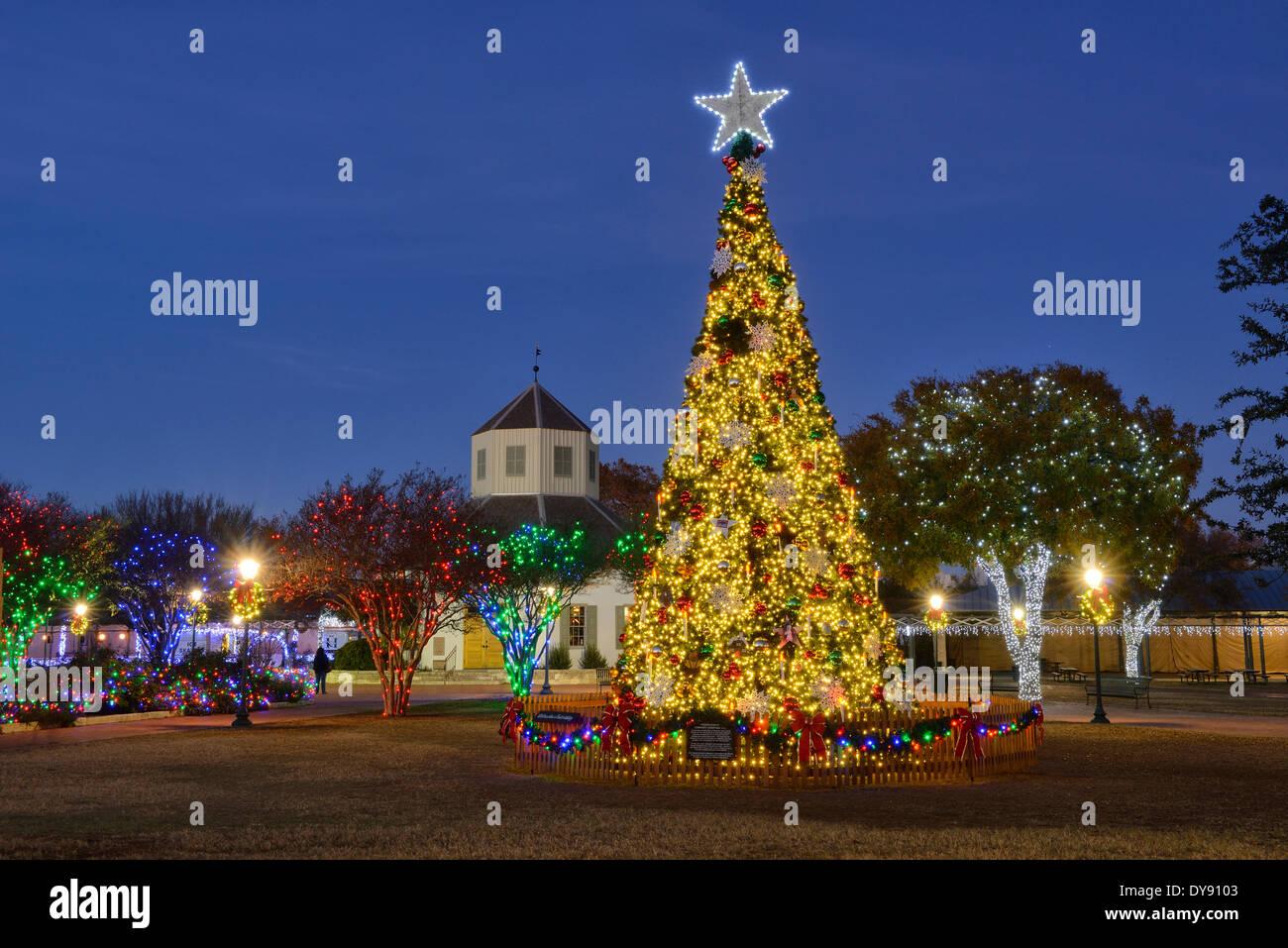 Texas Christmas Tree Stockfotos & Texas Christmas Tree Bilder - Alamy