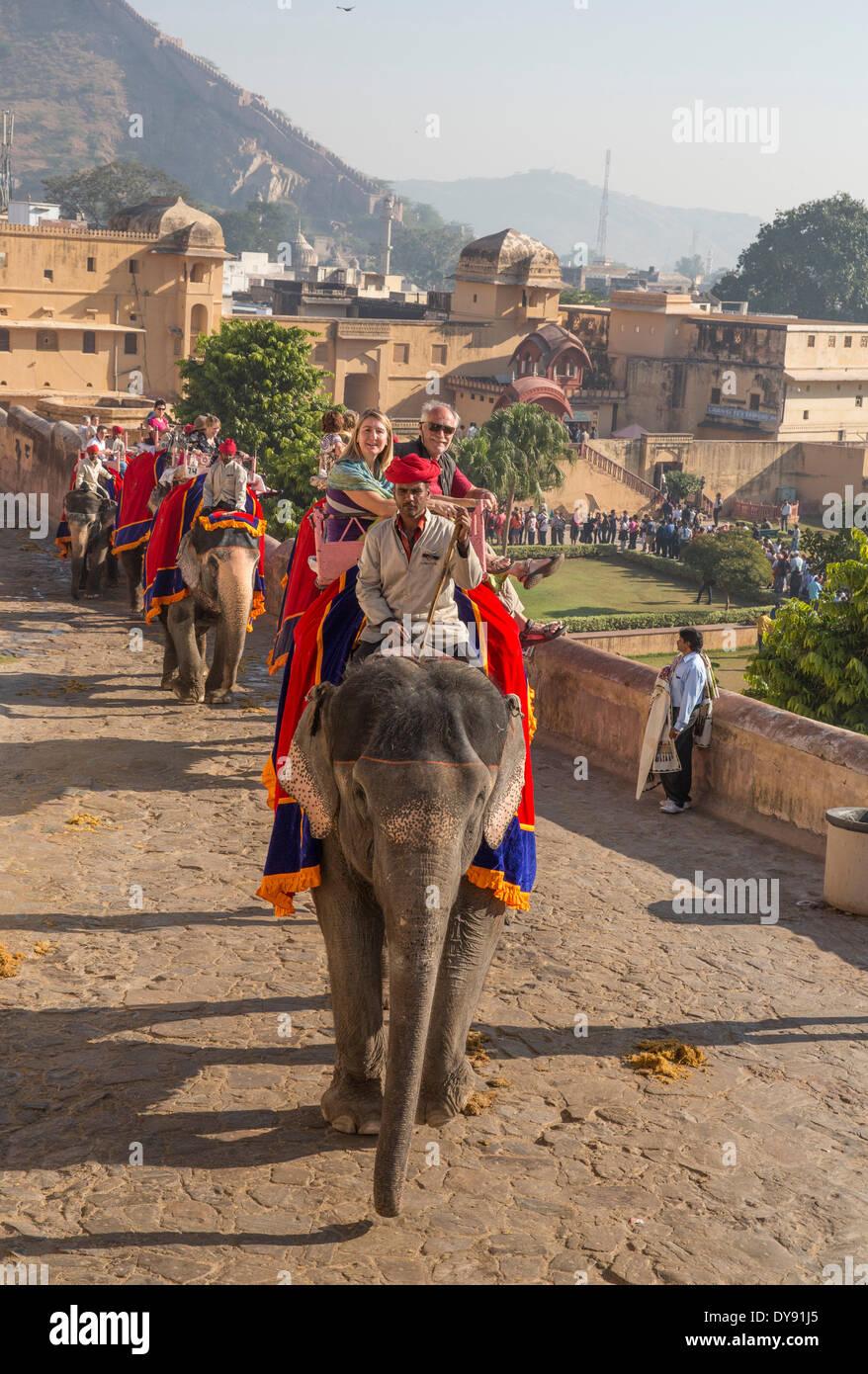 Touristen, Fahrt, Fort, Amber, Elefant, Elefanten, Asien, Indien Rajasthan, Amber, Jaipur, Stockbild