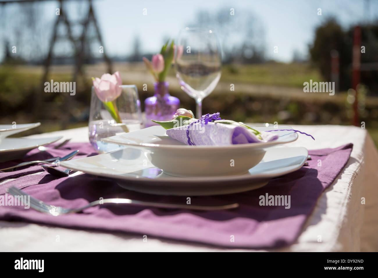 festlich gedeckter tisch stockfoto bild 68426553 alamy. Black Bedroom Furniture Sets. Home Design Ideas