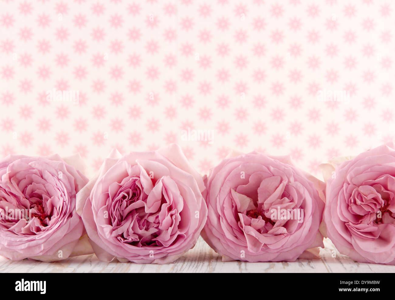 Pink Floral Wallpaper Stockfotos Pink Floral Wallpaper Bilder Alamy