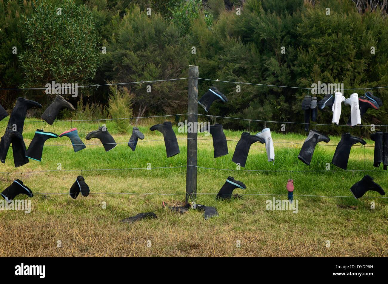 Gummistiefel (Gummistiefel, Gummistiefel) auf dem Display auf ein Land Zaun in Whangarei, Neuseeland. Stockbild
