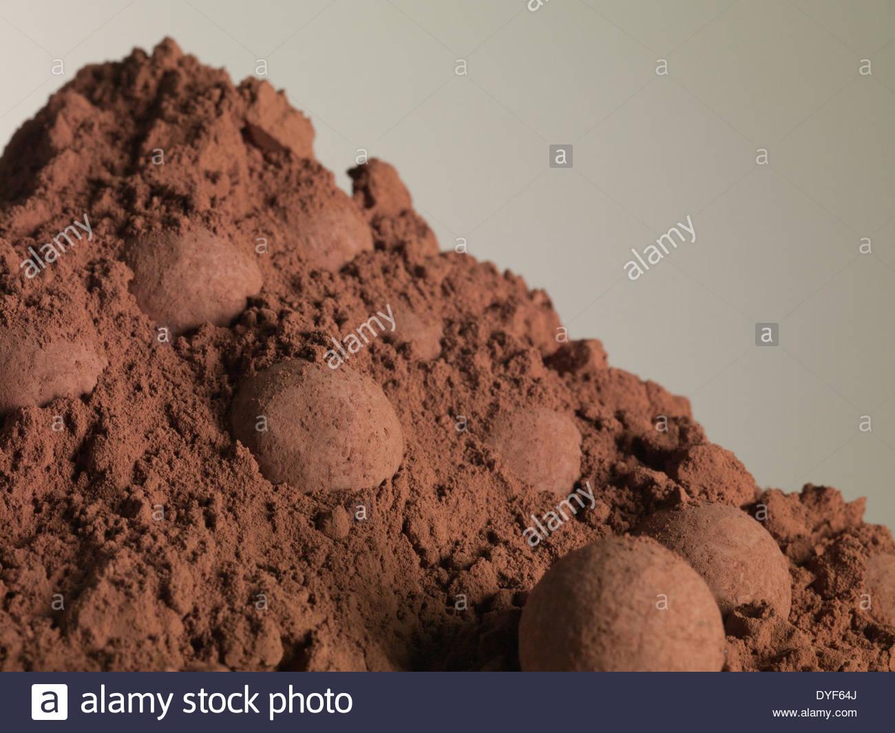 Haufen von Kakaopulver und Trüffel Stockbild