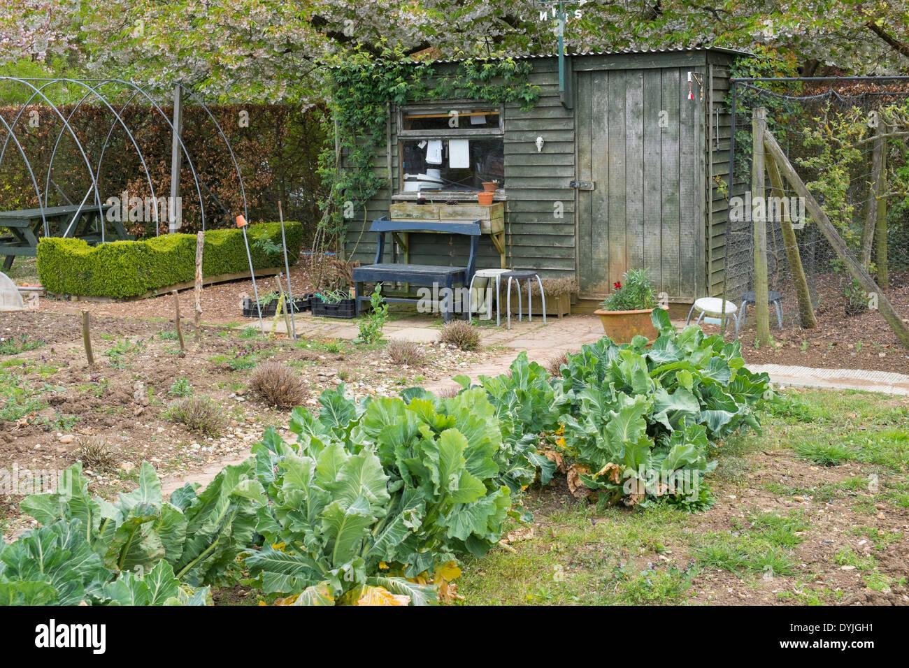 garden shed uk stockfotos garden shed uk bilder alamy. Black Bedroom Furniture Sets. Home Design Ideas