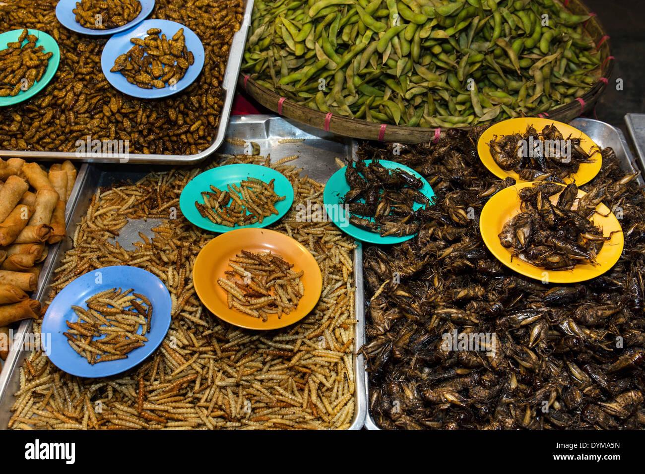 Seidenraupen und frittierte Grillen, thailändische Spezialitäten auf dem Nachtmarkt in Walking Street, Chiang Rai, Chiang Rai Provinz vom Grill Stockbild