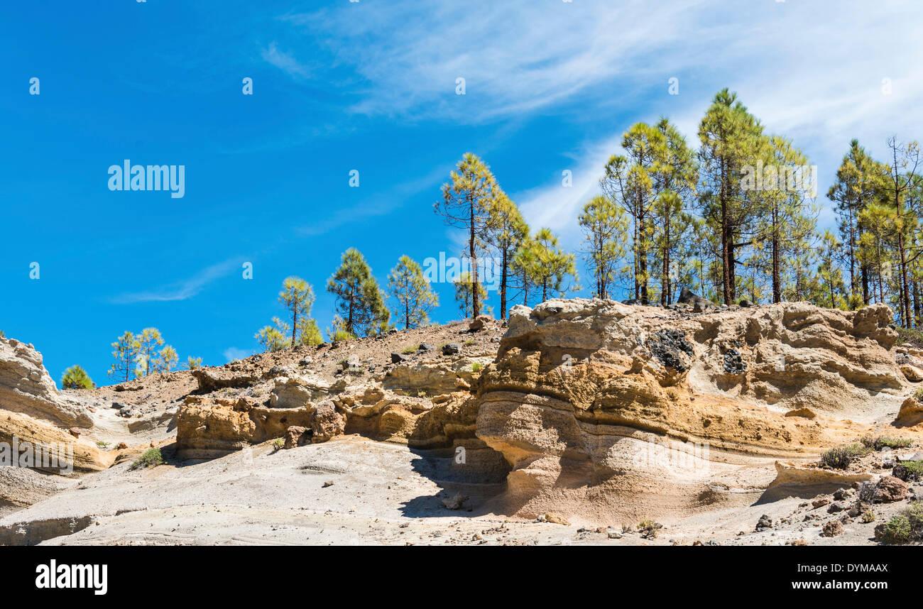 "Paisaje Lunar, ""Mondlandschaft"", Vilaflor, Teneriffa, Kanarische Inseln, Spanien Stockbild"