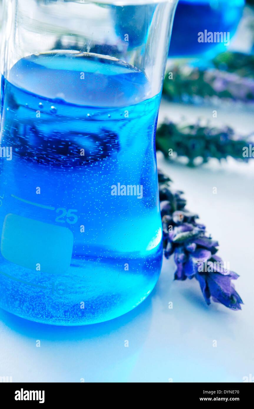 Nahaufnahme einer Flasche mit Blüten-Essenz und einem Haufen von Lavendelblüten Stockbild