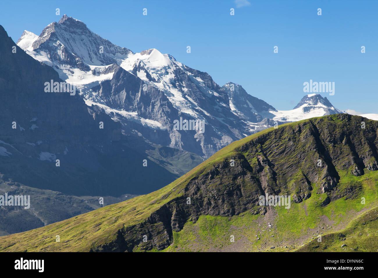 Montieren Sie Jungfrau von Grindelwald First, Schweiz. Stockbild