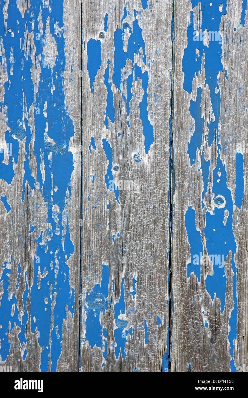 Blau gesäumt und abblätternde Farbe auf einem hölzernen Schuppen Stockbild