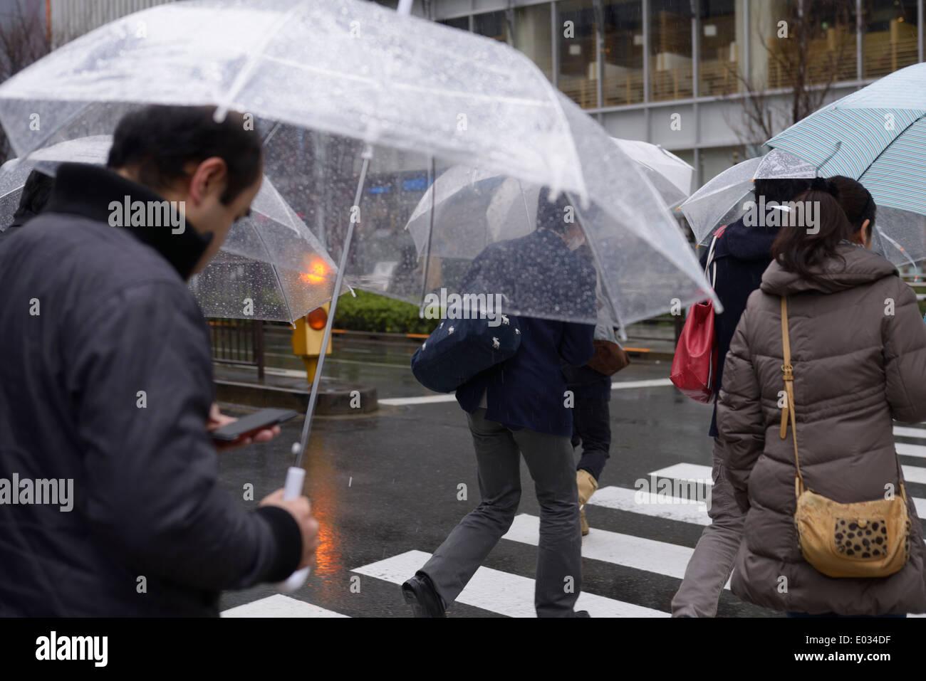 Menschen mit Regenschirmen über Straße im Regen, Tokio, Japan. Stockbild