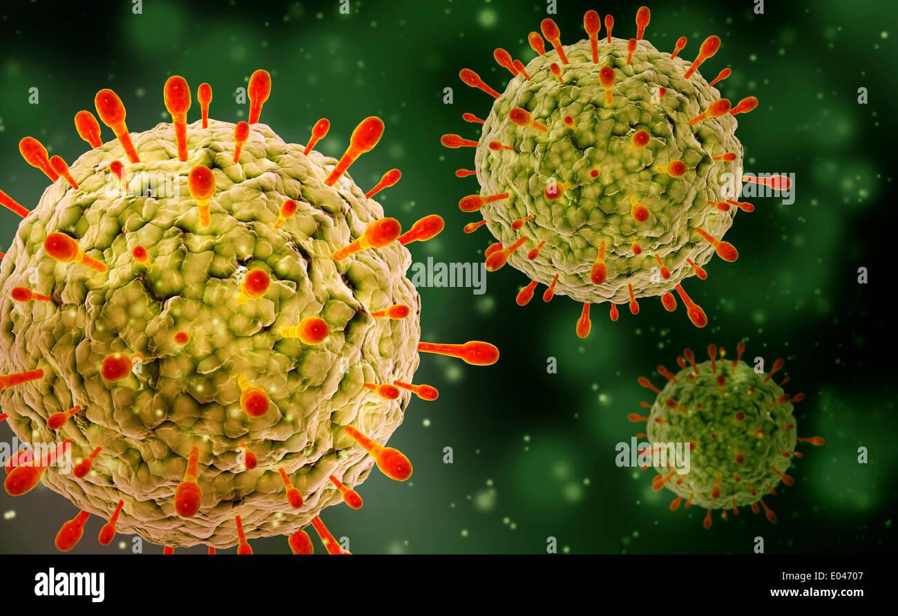 Mikroskopische Ansicht des Herpes-Virus. Stockbild