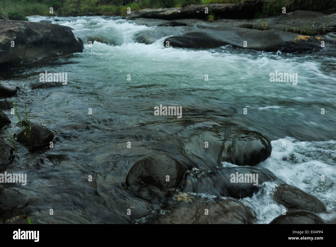 Szene der Stream fließt Wasser natürlichen Pool, rockt schnelle Strömung des Gebirgsflusses über Nässe rutschig Hintergründe Konzepte Stockbild
